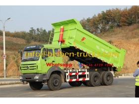 China supplier for cameroon beiben dumper